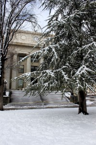 Prescott Courthouse Plaza - Photo by Sage Dillon