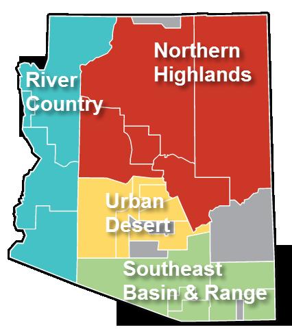 Market Regions
